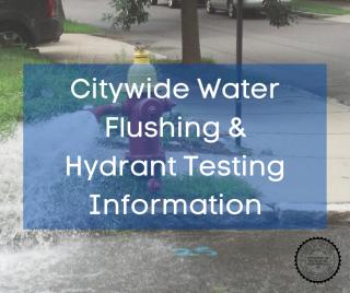 Open fire hydrant in residential neighborhood releasing water