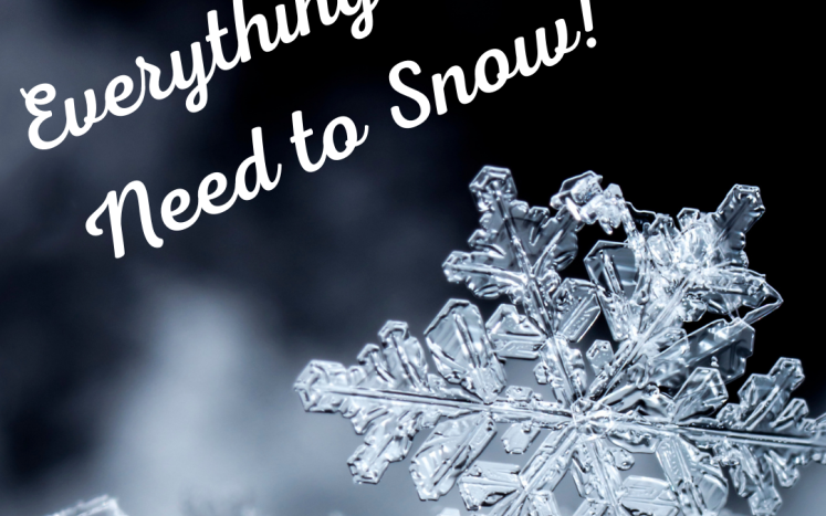 Everything You Need to Snow